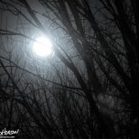 December 24th : Full Moon on Christmas Eve