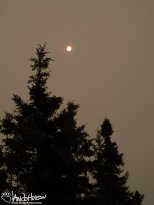 June 24th : Persistent heavy smoke in Fairbanks, Alaska