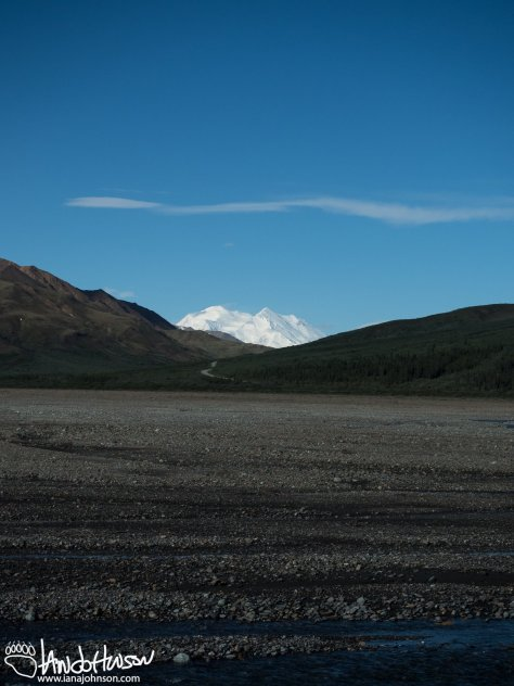 Here was our first view of Denali across a broad river valley. The far rise brought us to our first full (and spectacular) views of Denali!