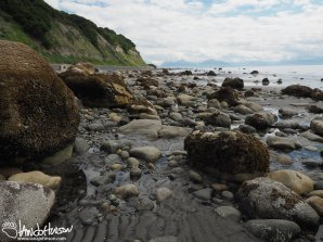 As the tide goes out, large boulders hold water and sea creatures - tide pool!