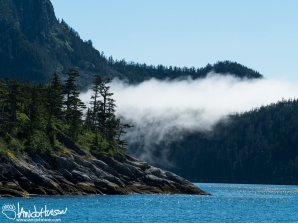 As we moved back onto the open ocean, heavy fog rolled in from the ocean. Although this island blocked much of the fog, it still spilled through the lowest point of the island like a living creature.