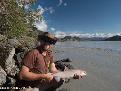 Sockeye Salmon Chitina River