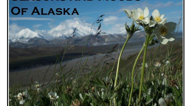 2016 Alaskan Calendar is Now for Sale!