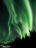 The aurora is punctuated by a intense white band.