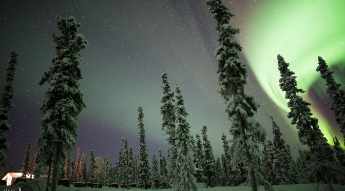 Take A Seat for the Aurora Borealis