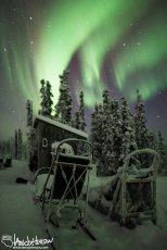 This image of empty sleds beckons the viewer to come take a seat and enjoy a beautiful show.