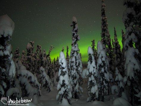 Low Aurora