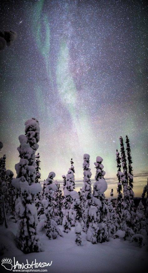 Nebula cluster