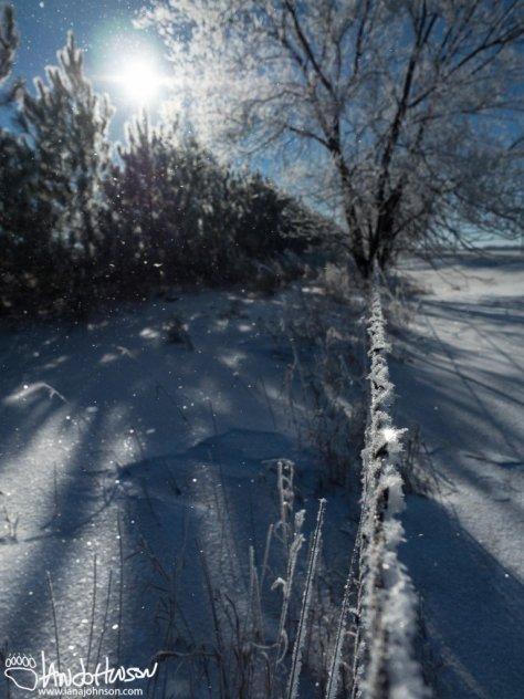 Hoar Frost floats in a puff of wind.