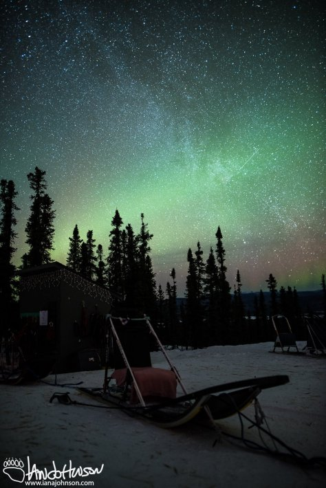 A fusion of the northern lights and the Milky Way Galaxy at Black Spruce Dog Sledding.