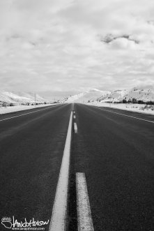 Along the road in Haines Pass