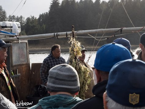 Holding up a large branch of herring eggs to see who needs them next. a