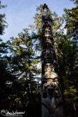 The sun highlights one of the faces at the Kasaan Totem Park.