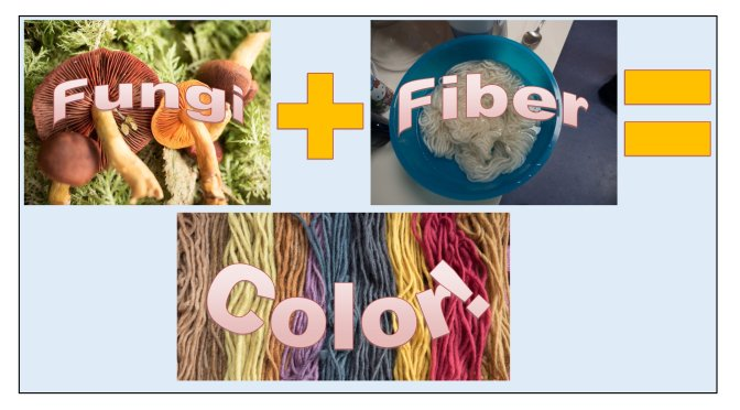 Local Fungi to Dye For