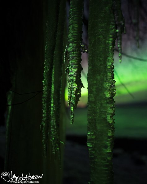 Aurora, Hoonah, Creative Photography, Alaska, Green, Ocean, Icy Strait, Mountains, Icicles