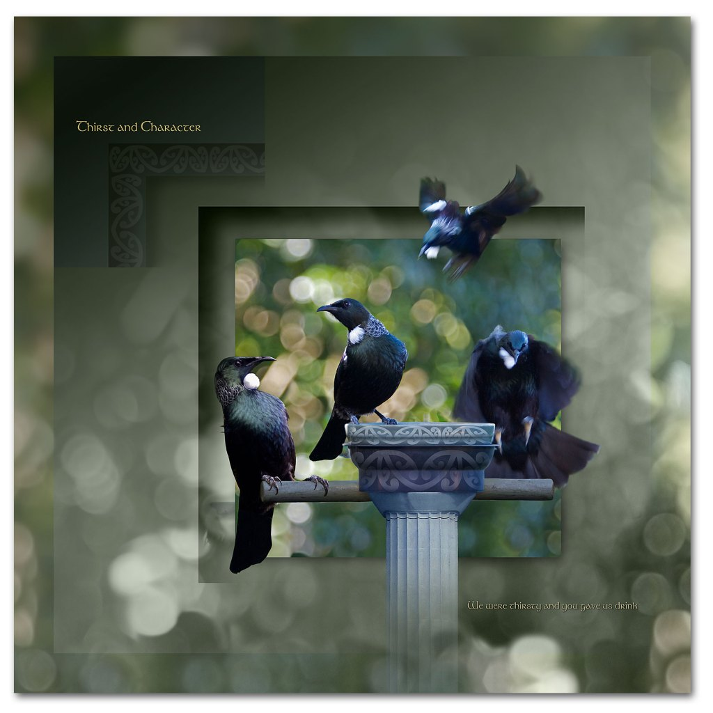 The Tui display thirst and character 1