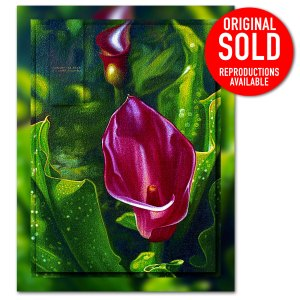 Red Cala Lily oil painting in all its splendour, oil painting.