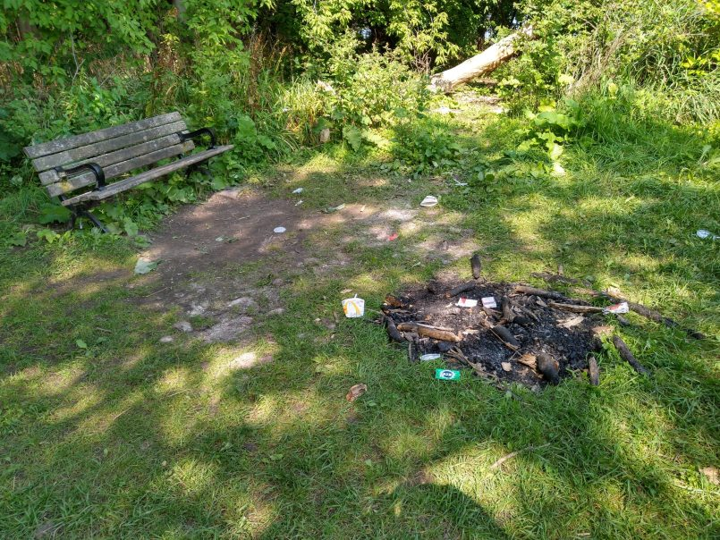 Fires and litter in Harbourview Park