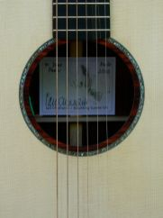 Abalone and cocobolo soundhole