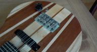 Electric cittern