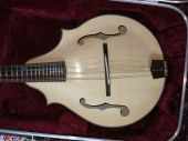 2 point F hole mandolin 2013