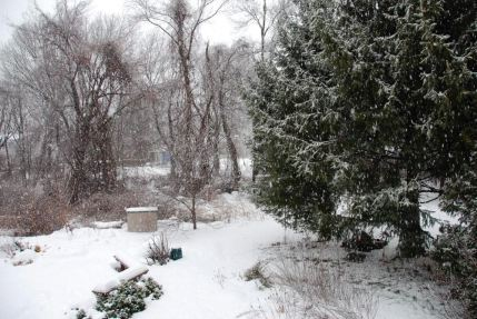 january-18-another-day-of-snow