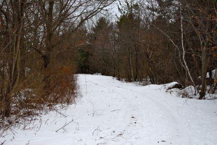 december-24-snow-at-the-reservoir