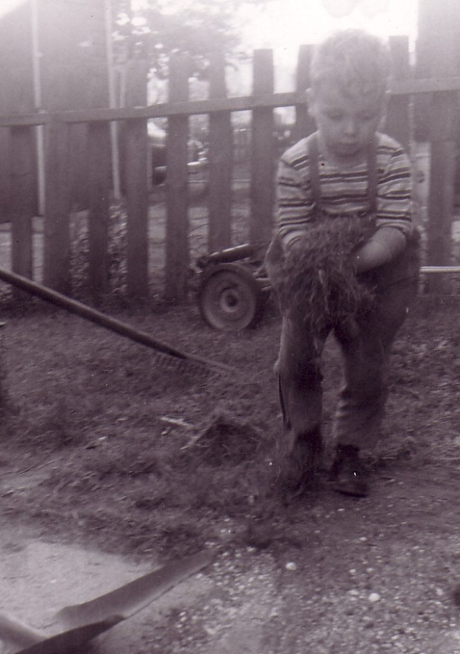 HADDEN Ian working in backyard May 1958