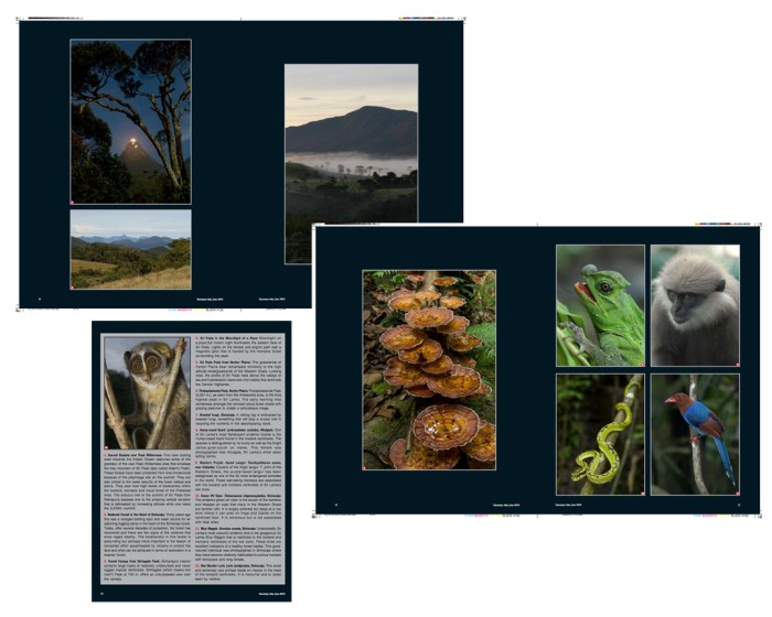 Last five pages highlighting landscapes and species in the Central Highlands (and Sinharaja).