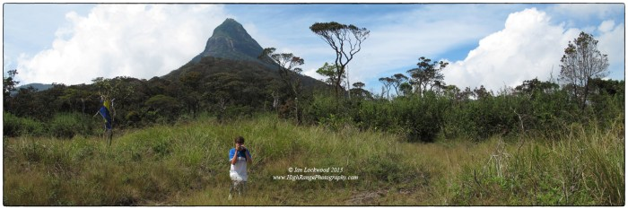 Looking for orchids  and other delights in the grassy meadow below the peak (altitude 1900 meters). John visits a favorite area..