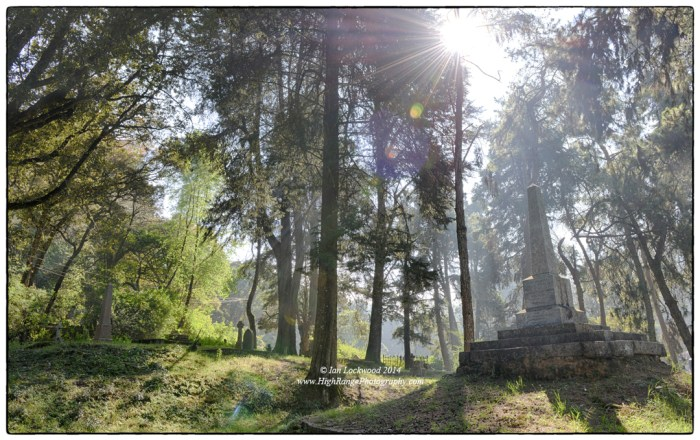Old place, new light: the Old Cemetery on Lower Shola Road in Kodaikanal.