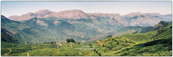View of Anai-Mudi & the Eravikulam plateau from the east. Scanned from 35mm color negatives.