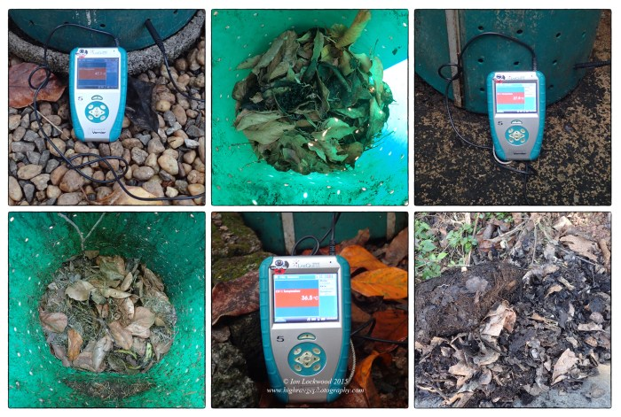 Compost at three  stages in our garden. The Vernier Labquest shows the temperature of each bin.  The active bin and temperature is on the left with a temperature of 47.1 C.