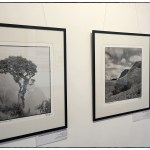 DC_Exhibition_B&W_3a(07_18)