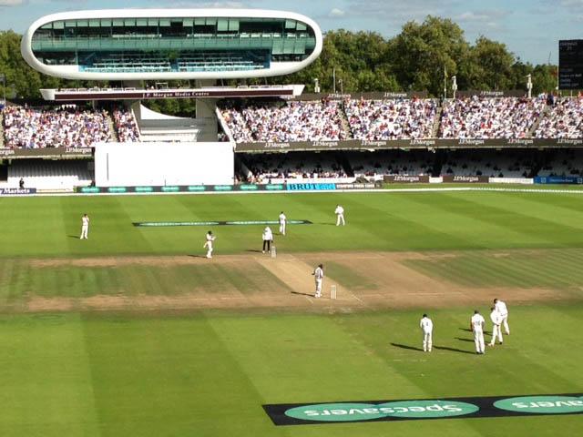Cricket, lovely cricket