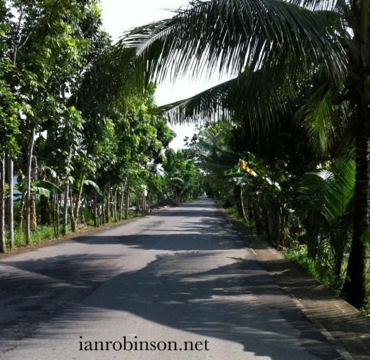 North West of Cebu Road