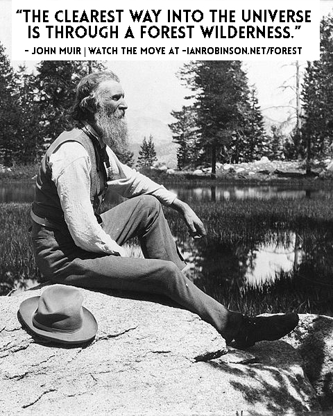 john muir forest quote