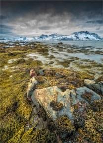 Henningsvaer-Lofoten-2016-NOR0038-18x25 (1)