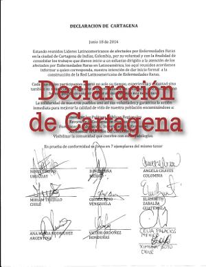 Declaración: Encuentro de líderes de asociaciones de pacientes con EERR