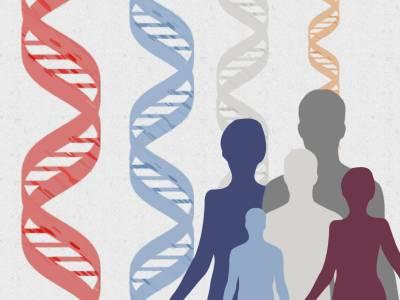 Resultados preliminares de dos ensayos clínicos aportan las primeras evidencias de edición del genoma humano in vivo