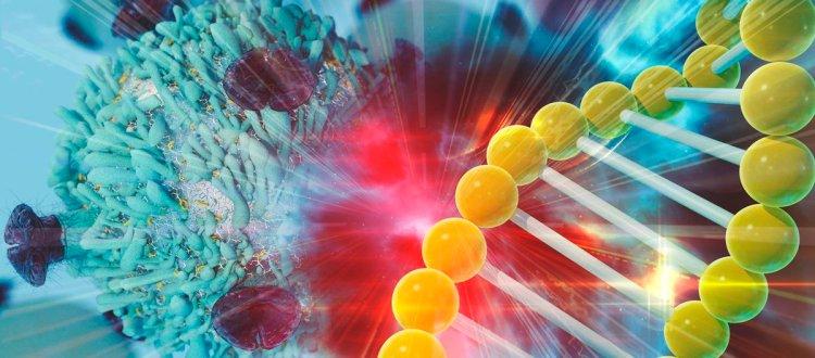 Investigadores de Vancouver descubren que las células sanguíneas podrían ayudar a evaluar la eficacia de Ambroxol en GD tipo 3