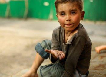 IAPHSchild-begging