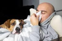 air filters reduce allergies