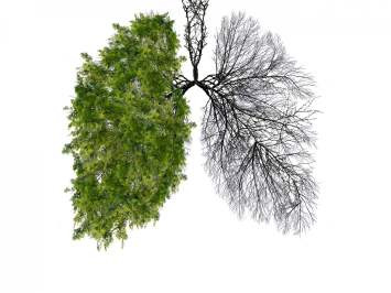 health indoor air quality