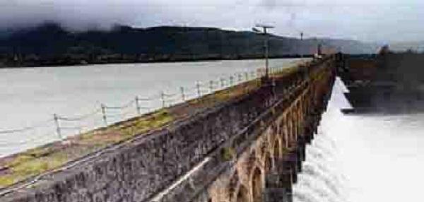 446376-dams