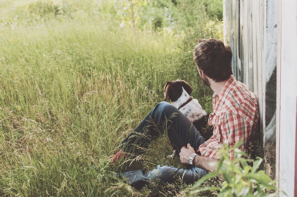 Buy Pet Insurance When Your Pet Is Young