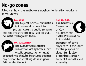 mind map-issue of cow protection