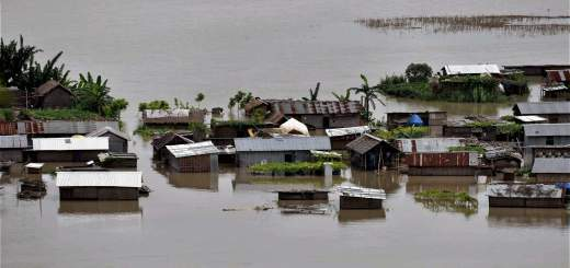 Assam flood image