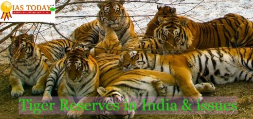 Tiger reserves in india and issues