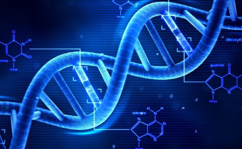 Les modifications de l'ADN dans la nature peuvent modifier radicalement les écosystèmes de manière inattendue